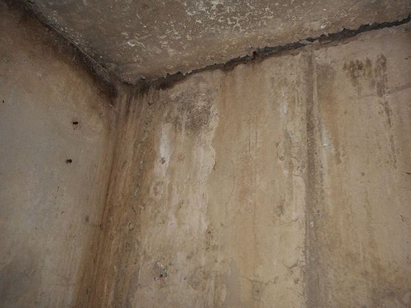 Cold Cellar Leaks Amp Repairs Pcs Waterproofing