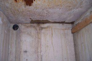 Cold Cellar Leaks