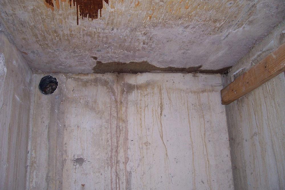 Cold Cellar Leaks & Repairs